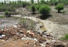 Deponie von festen Abfällen an den Ufern des Flusses