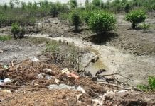 landfill of solid waste on the banks of the river Marapanim