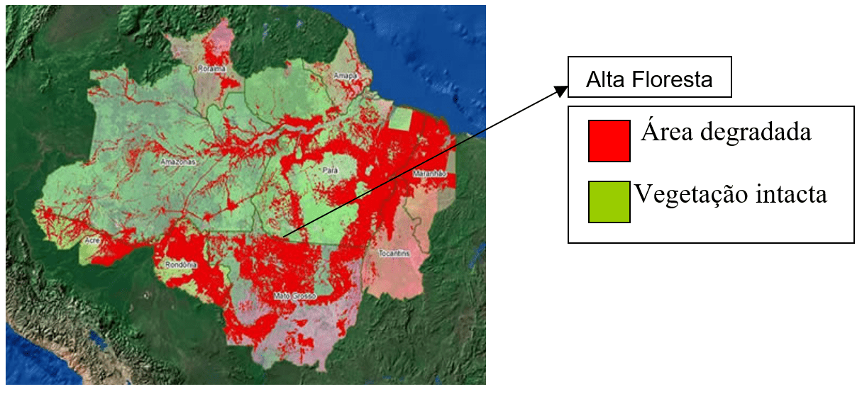 Deforestation in the region called Legal Amazon