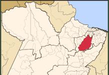 Microrregião de Tomé Açú