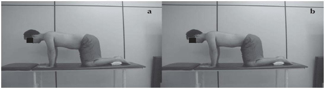 Reeducação do transverso do abdomên em quatro apoios: (a) nota-se o relaxamento da parede abdominal; (b) contração do transverso do abdômen.Fonte: França et al, 2008.