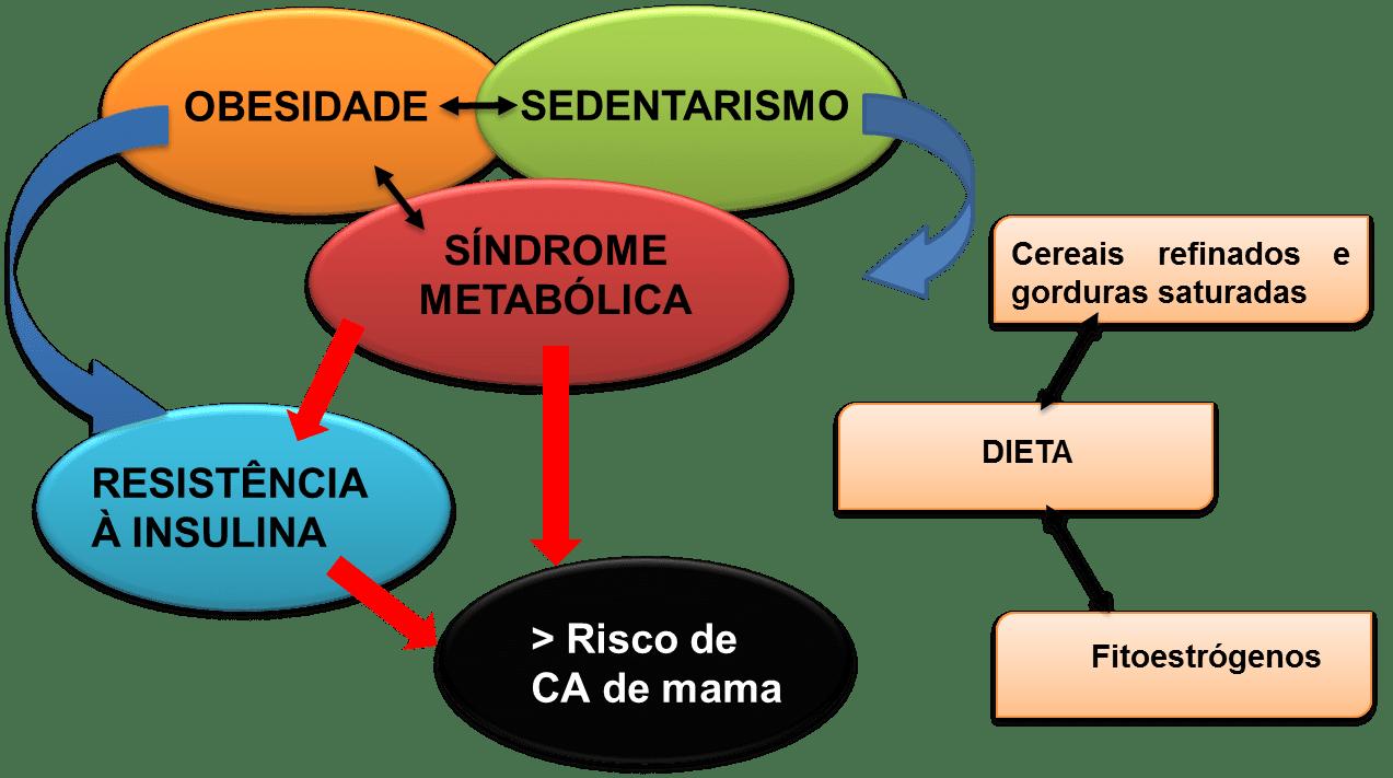 Fatores de risco para síndrome metabólica e câncer de mama. Fonte: LARGENT (2010).