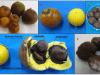 Frutos maduros de macaúba (A); fruto com e sem epicarpo (B); coquinho (endocarpo + amêndoa) (C); fruto de macaúba cortado ao meio evidenciando todas as partes do fruto (D); amêndoas (E).Fonte: Ciconini (2012).