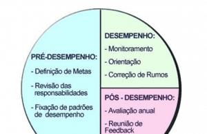 Figura 1 - Gestão do desempenho. Fonte:http://www.dominusrh.com.br/Interns.asptabela=Produtos&Id=L
