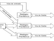Figura 3 - Diferentes vias de entrada de estímulos em peixes (Adaptado de Cymborowski (2010).