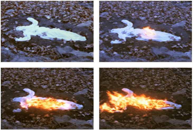 Figure 8 - Ana Mendieta, Alma Silueta en Fuego (Silueta de Cenizas), 1975. Super-8 color, silent film transferred to DVD, running time: 3:30 minutes. Edition of 6. [http://www.galerielelong.com/artist/ana-mendieta]