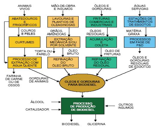 Figura 1 – Cadeia Produtiva do biodiesel. Fonte: AGE e DONNINI, 2006.
