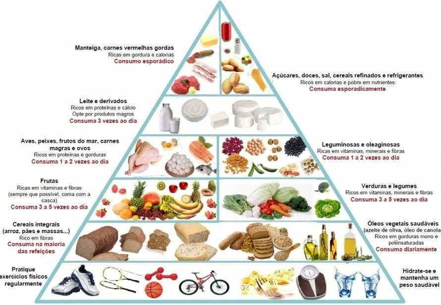 Figura 1 - Pirâmide alimentar. FONTE: www.portaldoprofessor.mec.gov.br