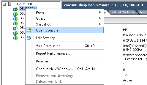 Figure 3-virtual server access via vSphere 5.0. Source: adapted from (ABHILASH, 2015, p. 281)
