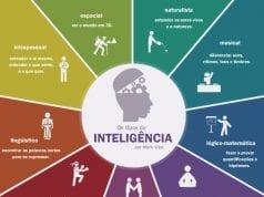 Figura 2 - Os tipos de Inteligência. Fonte: Os tipos de Inteligência por Mark Vital, 2016.
