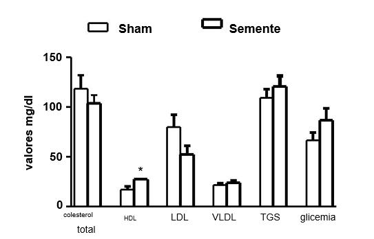 Figura 1: Efeito da administração de semente de abóbora em ratos Wistar machos hipercolesterolêmicos. Os valores para as variáveis colesterol total, HDL, LDL, VLDL, TGS e glicemia são expressos em mg/dl. * p< 0,05. HDL: lipoproteína de alta densidade, LDL: lipoproteína de baixa densidade; VLDL: lipoproteína de densidade intermediária; TGS: triglicérides.