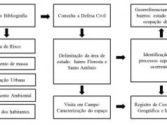Figura 1 – Fluxograma Metodologia