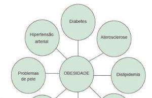 Figura 2: Diagrama das doenças relacionadas à obesidade infantil.Fonte: Silveira (2017, p. 62)