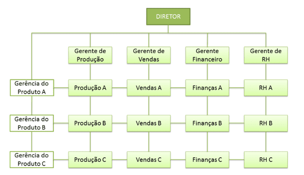Figure 6-matrix organizational structure. Source: available at: http://www.adminconcursos.com.br/2014/07/estruturas-organizacionais.html