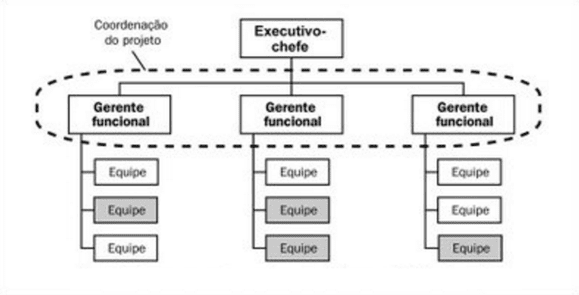 Figura 08-funzionale Matrix. Fonte: disponibile presso: https://brainstormdeti.wordpress.com/2010/06/08/estruturas-organizacionais-e-projetos srcset=