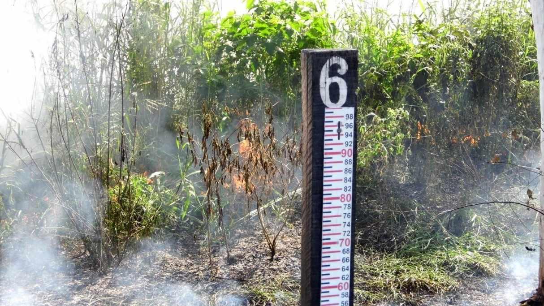 Figura 9: Ocorrência de queimada na margem do Rio São Francisco em março de 2016.Fonte: Acervo do autor