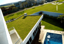 Telhado verde - Anthera